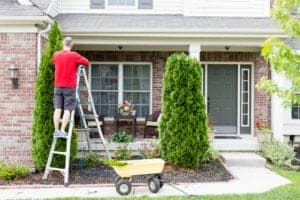 Trimming trees and shrubs to get ready for winter | Home maintenance tips from Roth Companies and Roth Construction Company services water, fire, smoke damage restoration and remediation for Cleveland, Elyria, Akron, Canton, Sandusky, Youngstown, OH, Ohio areas